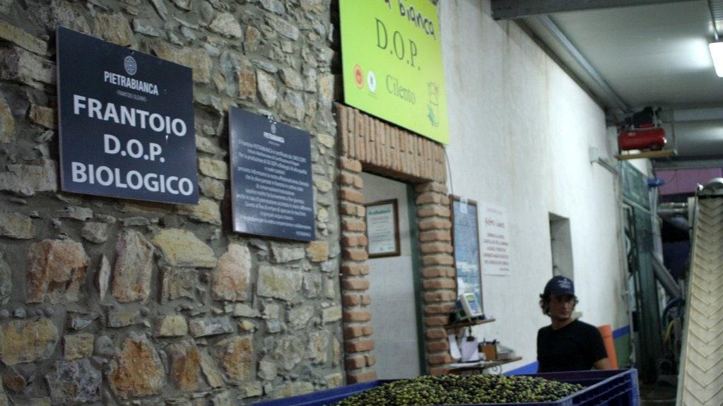 Italien Olivenöl Ölmühle