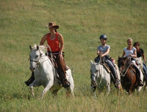 Horseback Riding in Umbria