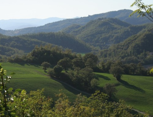 Hiking in Umbria: Circular walk in Montone